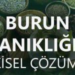 burun-tikanikligina-bitkisel-urunler